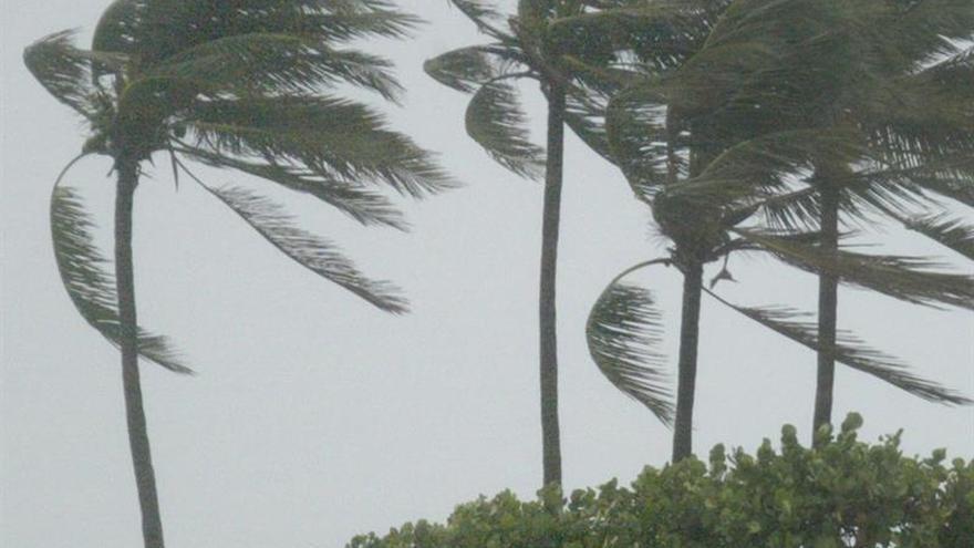 Hermine se vuelve un poderoso ciclón postropical y ya se cobró 2 víctimas