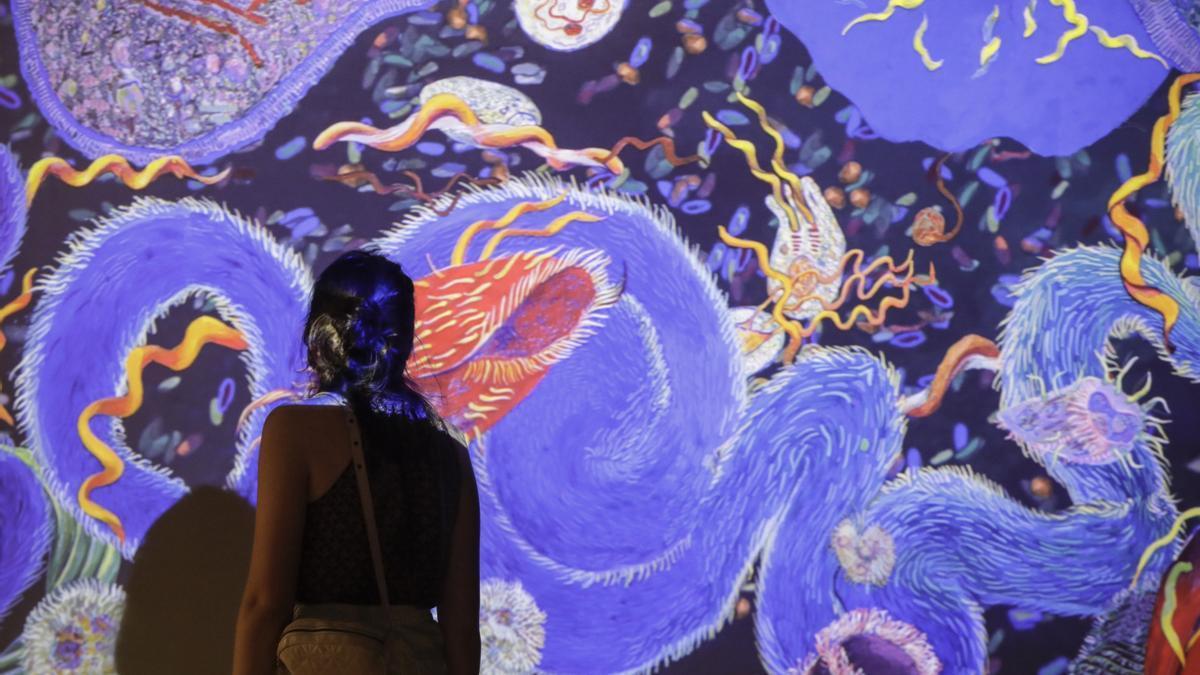 Exposición 'Ciencia fricción' del CCCB