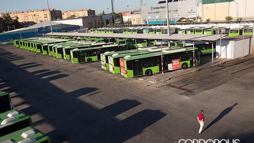 Autobuses de Aucorsa en los aparcamientos de Chinales | MADERO CUBERO