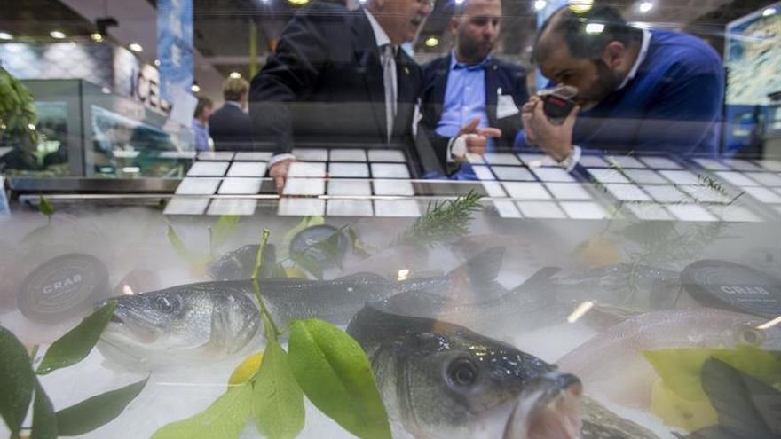 España destaca la calidad y sostenibilidad de su pesca en la Seafood Expo