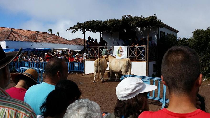 Acto de entrega de trofeos. Foto: Abilio Reyes.