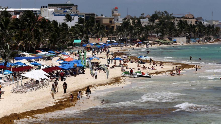 La llegada masiva de sargazo comienza en las costas mexicanas de Quintana Roo