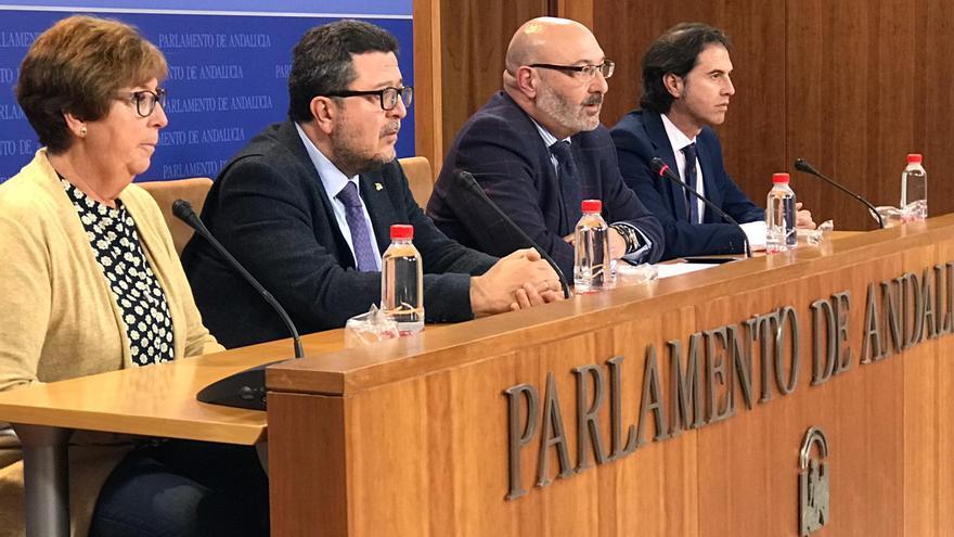 Vox llevará la derogación de la Ley de Memoria a la comisión del Parlamento andaluz que ahora preside