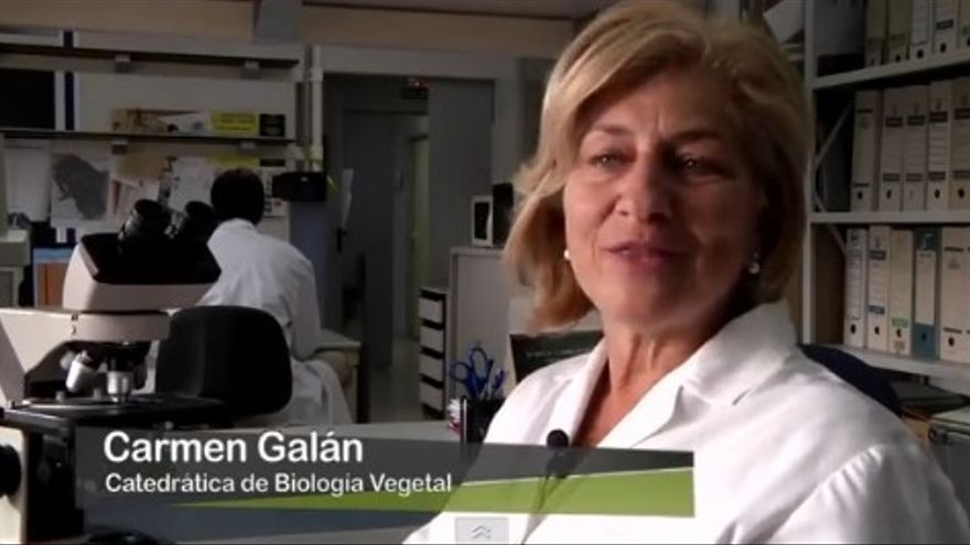 Carmen Galán, catedrática de biología vegetal
