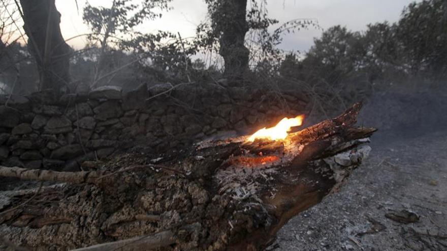 El incendio que obligó a desalojar un camping está controlado y quemó 190 ha.