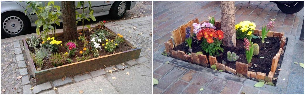 Dos ejemplos de alcorques-jardín similares a los planteados pero con menor altura y sin hueco en el medio