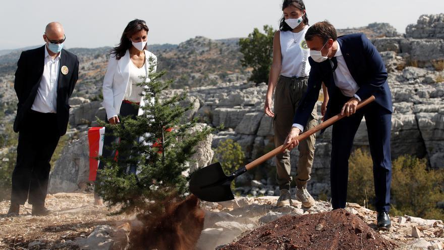 Macron planta un cedro en el centenario de la creación del Líbano