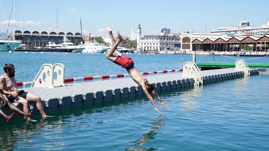 Un bañista en la piscina natural habilitada en la Marina de València