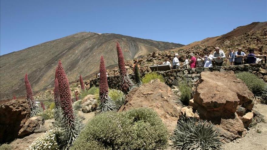 Más de 9 millones de pasajeros extranjeros han visitado Canarias este año