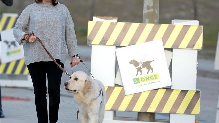 Sáenz de Santamaría amadrina a Ulpa, un perro guía de la ONCE