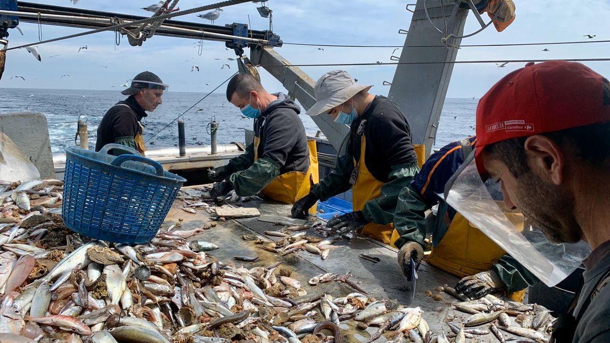 Actividad a bordo de un barco pesquero