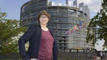 La Eurocámara aprobó ayer el informe de la eurodiputada del Partido Pirata, Julia Reda