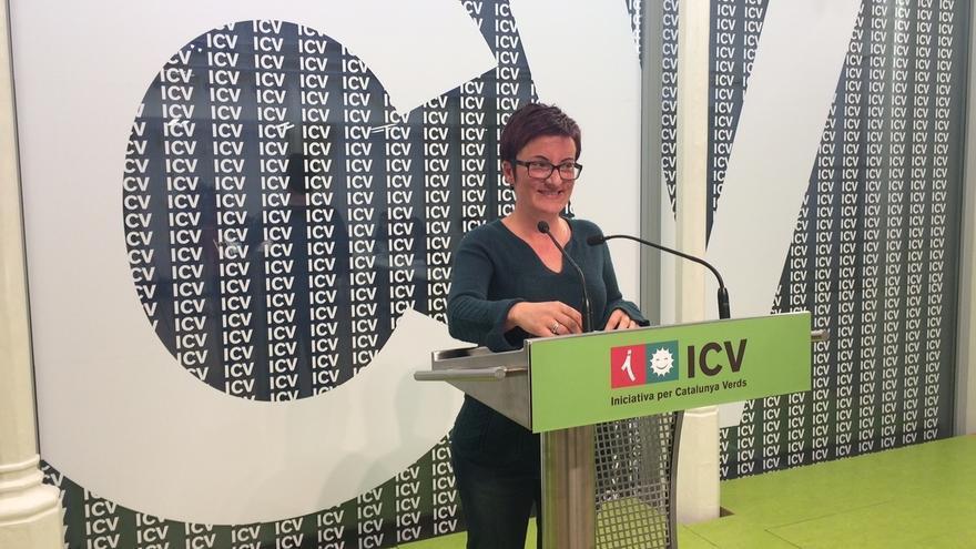 ICV afirma que la guerra no es la solución para acabar con los atentados