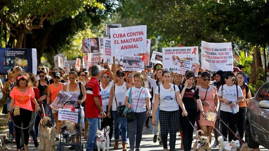 Cubanos marchan contra el maltrato animal en una manifestación permitida por el Estado