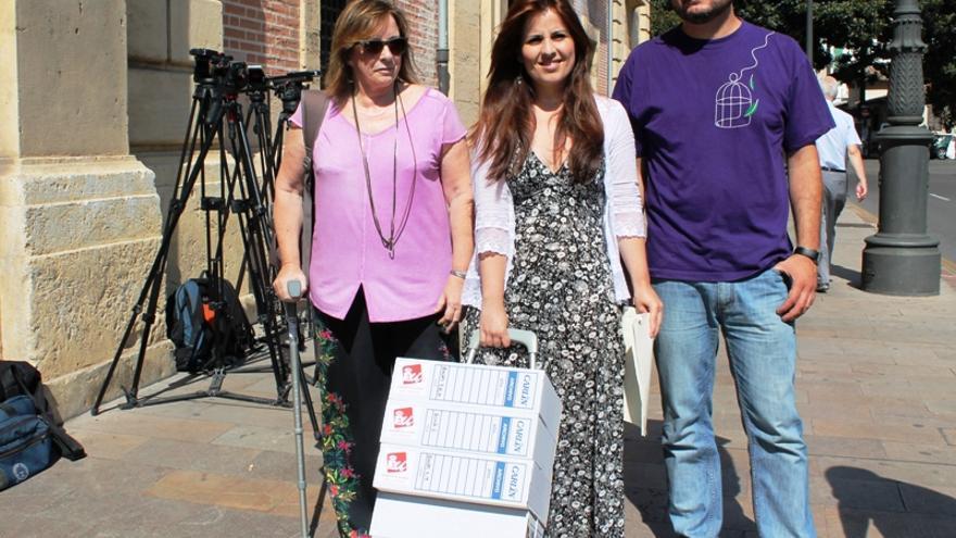 Los diputados López, Sanz y Blanco presentan la documentación sobre las residencias ante el TSJCV