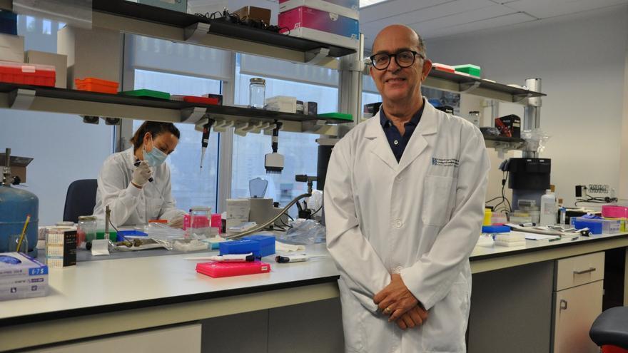 Javier Díez-Domingo, director del Área de Investigación en Vacunas de Fisabio.