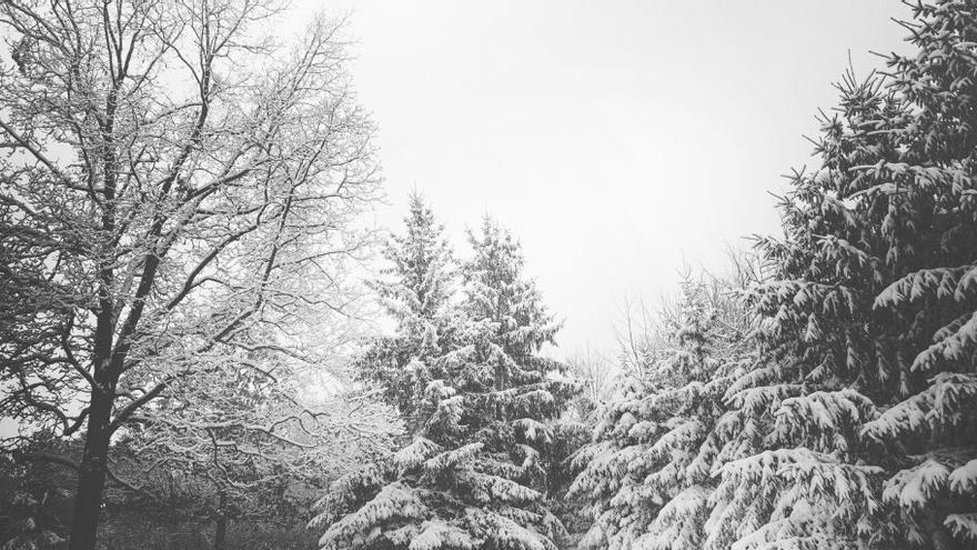 Las nevadas afectan especialmente a las comarcas centrales