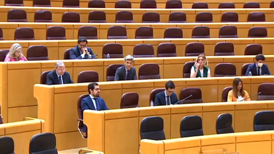 Los senadores del PP, en la comparecencia de Mateo