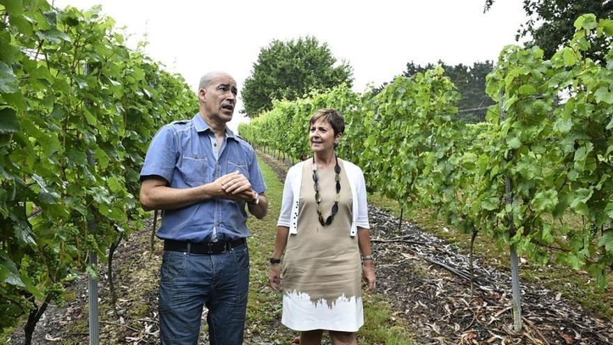 Gobierno vasco convoca el programa Lehiatu Berria con 17,9 millones para industria agroalimentaria, forestal y pesquera
