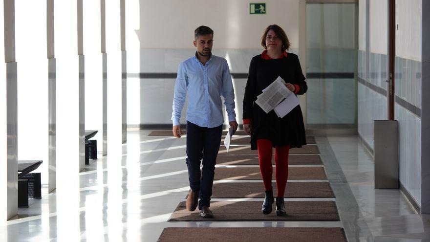 IU en el Parlamento de Andalucía.