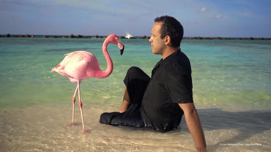 """The Mystery of the Pink Flamingo"", nueva montaña rusa del género documental"