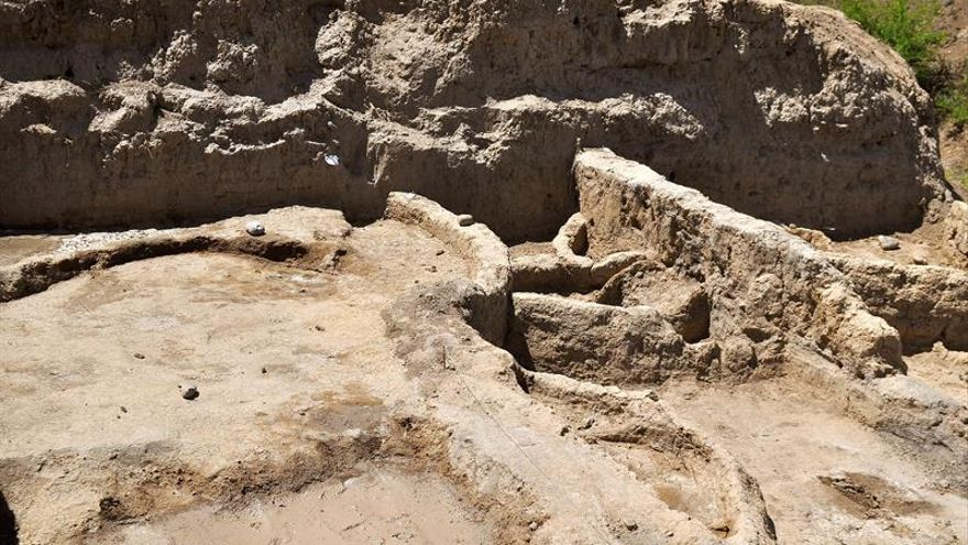 El hombre ya hacía vino hace 8.000 años, según arqueólogos