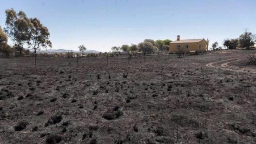 Incendio en Cáceres / Twitter @OpcCaceres