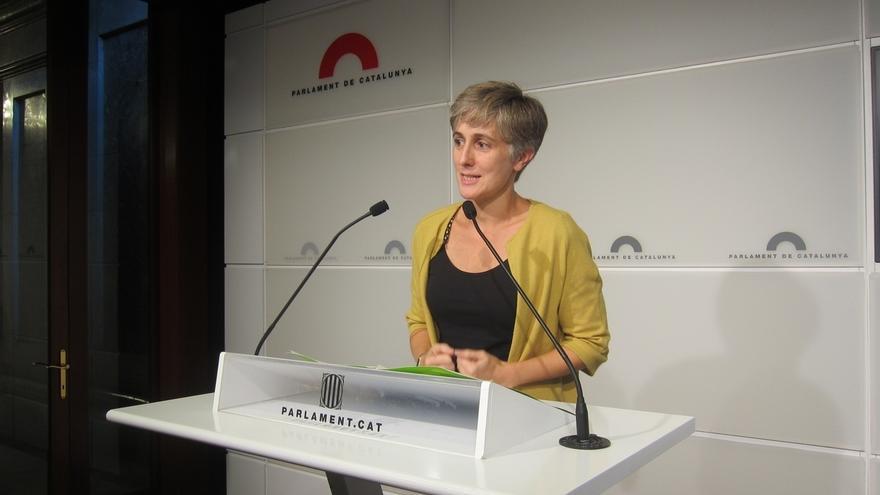 """ICV-EUiA se autoinculpará ante la Fiscalía como """"coautor intelectual y material"""""""