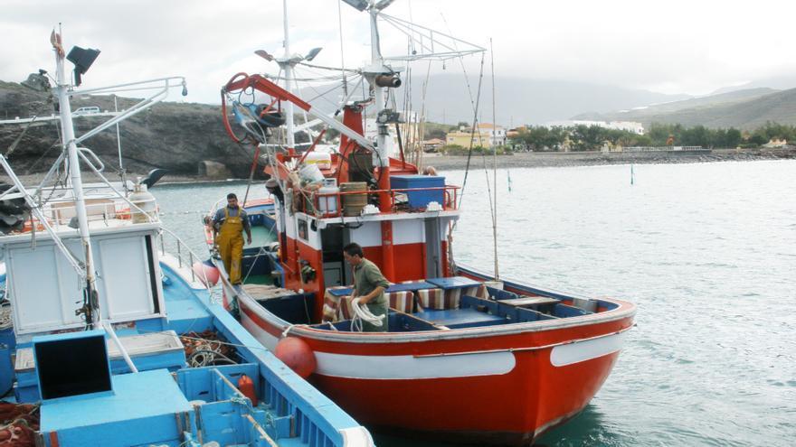 Barcos artesanales cañeros para la pesca de túnidos, atracados en un puerto canario