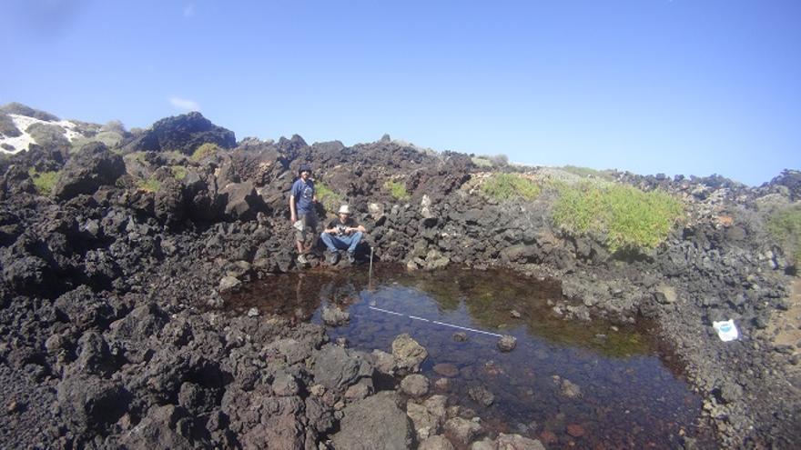Alvaro Garcia-Herrero y Guillermo García-Gómez trabajando en los Charcos de Luis, otro hábitat de los jameítos que se pretende utilizar para educación ambiental.