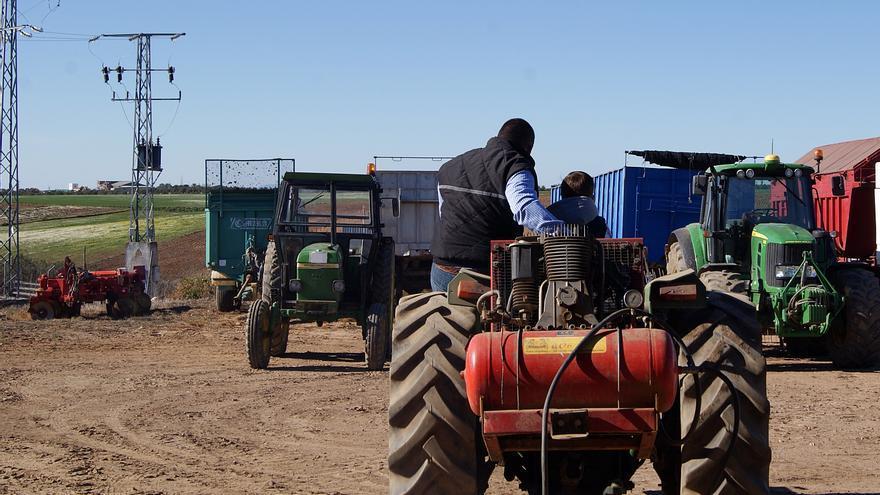 Un joven agricultor aprende el oficio de su padre.