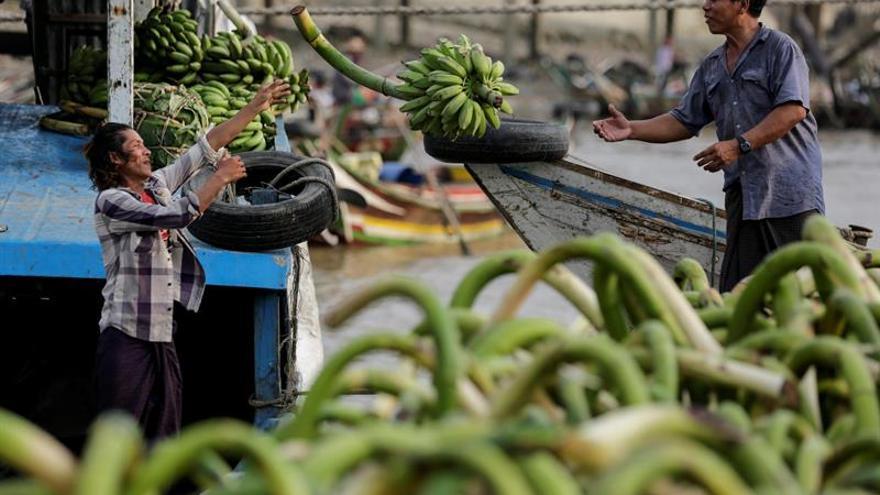 La desnutrición y el sobrepeso se extienden por las islas del Pacífico, dice la FAO