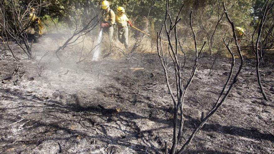 El fuego de Alta Sanabria iniciado hace dos días sigue activo y en nivel uno