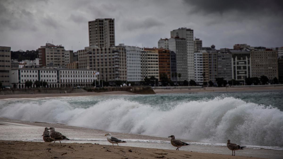 Vista de A Coruña desde la playa de Riazor.