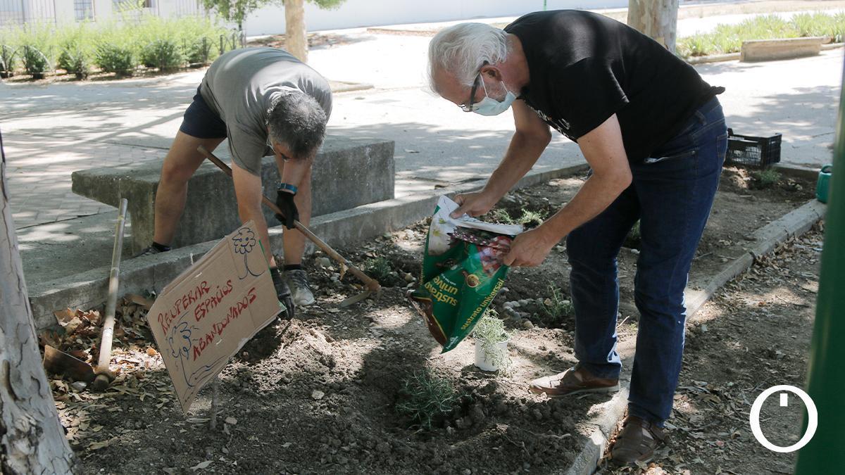 Plantación de plantas en 'Nos plantamos por el clima'