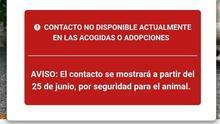 """Leales.org oculta sus anuncios de adopción de animales para evitar a los santeros en San Juan: """"Personas sin alma van decapitando animales por nuestras playas"""""""