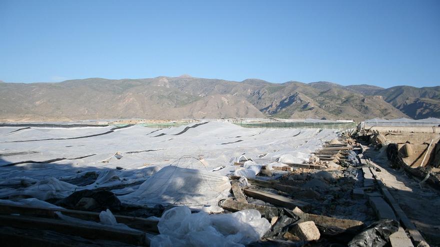 Invernadero de El Ejido afectado por el granizo de finales de noviembre.