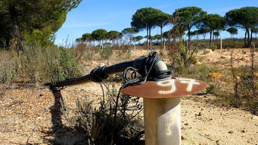 Pozo ilegal en monte público. Señalizado por los guardas forestales. Lucena del Puerto (Huelva)