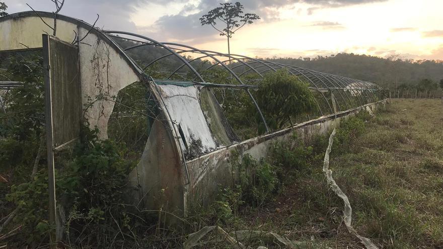 Restos de un invernadero en República Dominicana construido con fondos públicos de la Generalitat Valenciana
