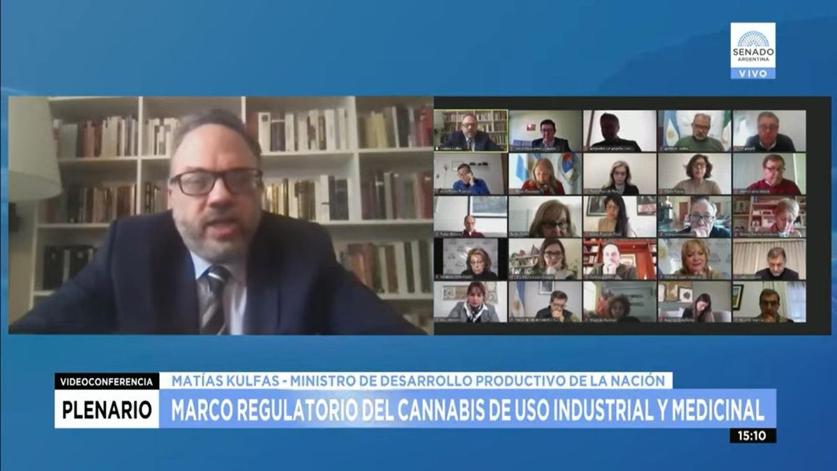 El ministro de Desarrollo Productivo, Matías Kulfas, frente a los senadores de las comisiones a las que fue girado el proyecto.