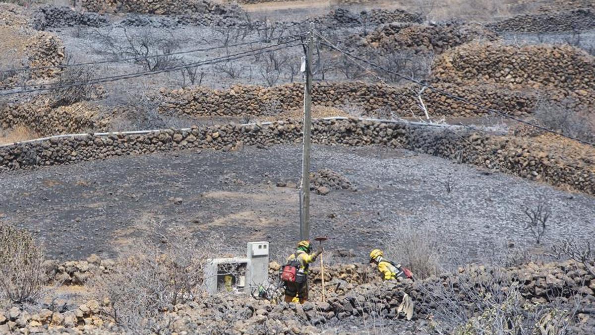 Trabajadores de las Brigadas de Extinción de Incendio Forestales (BRIF) de La Palma recorren la zona quemada por el incendio que se declaró este martes en el municipio de El Paso apagando rescoldos.