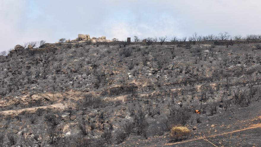 Paisaje calcinado en Gran Canaria por el incendio