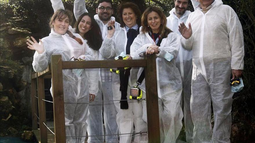 La UNESCO recibe el Plan de Conservación Preventiva de la cueva de Altamira