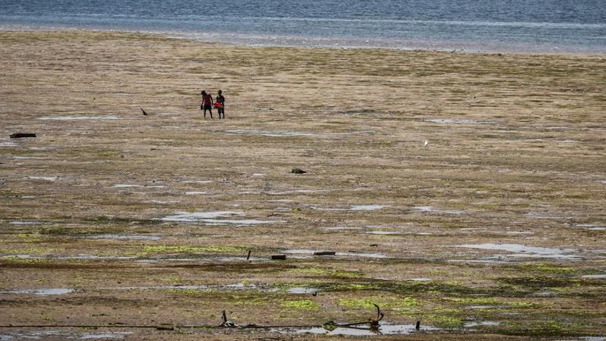 Prohíben la construcción de una central eléctrica de carbón en la costa de Kenia