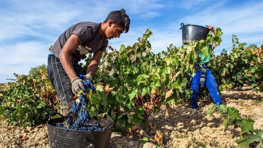 España expone a Francia su preocupación por acciones contra el vino español