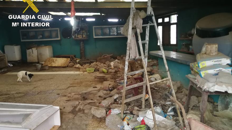 Vivienda donde se han rescatado perros abandonados en Juan Grande