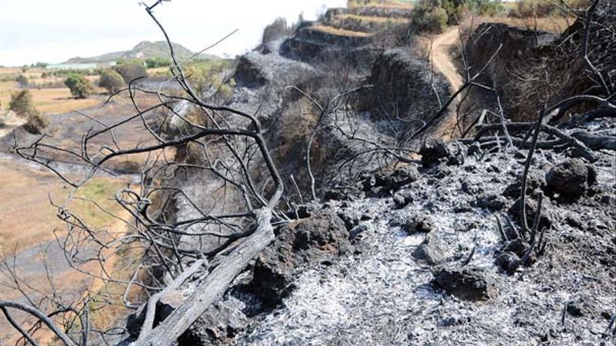 Del incendio en Tenerife #5