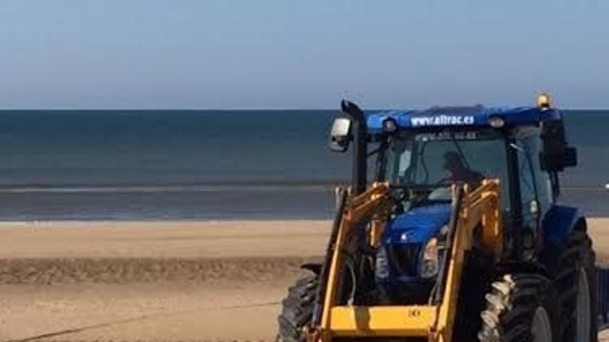 Aparece muerta una cría de ballena en Nueva Umbría, el cuarto cetáceo hallazgo en una semana en la costa