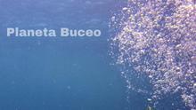 'Planeta Buceo', una ventana abierta al mar en Toledo