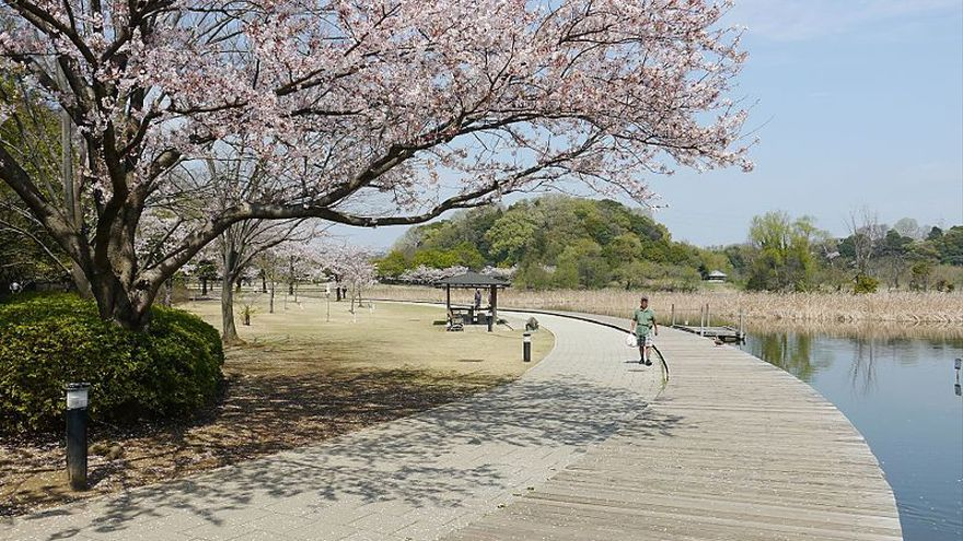 En Matsudo, cuando termine esta década más del 28% de las 480.000 personas de la ciudad tendrá al menos 65 años
